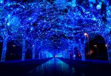 渋谷ストリームのクリスマスイルミネーション開催